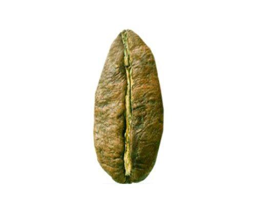 Liberica καφές