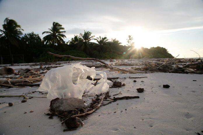 πλαστικά απορρίμματα
